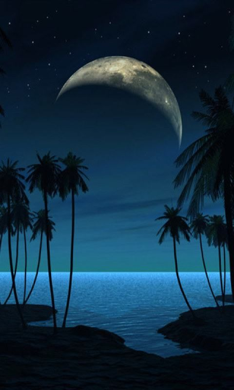 Full Moon Beach { moon part war genny finds the visioners tat show her luke}