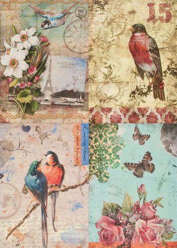Carta decoupage, 50x35 cm, Birds, 1 pezzo