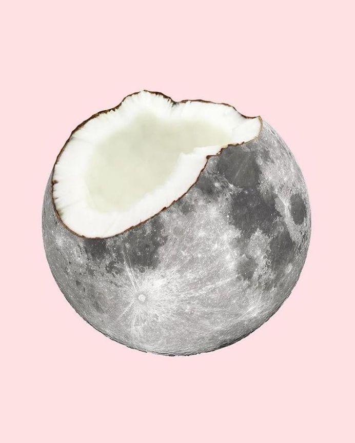 Coconut moon in Fresh