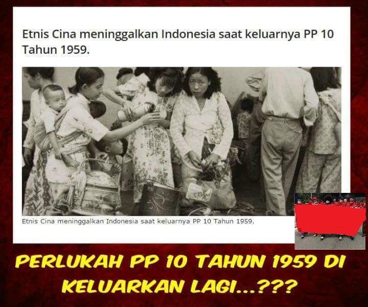 Pro Dan Kontra & Latar Belakang Serta Dampak Peraturan PP10/59 | The Wheel Of Fortuna.Com