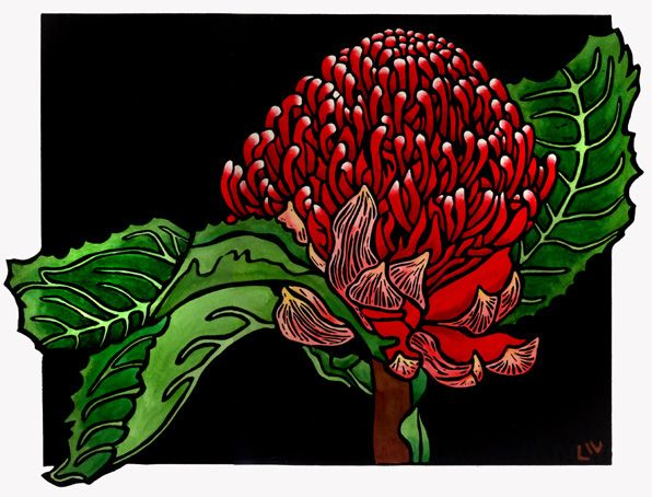 Waratah Design - Limited Edition Handpainted Linocuts by Lynette Weir