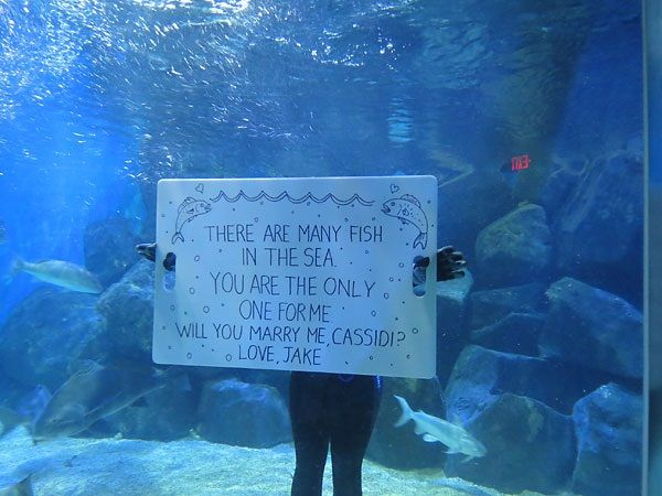 Underwater Proposal~Underwater Proposal: Some people will go to great lengths to surprise their significant other. In this case, Jake actually got into an aquarium fish tank to surprise his girlfriend.
