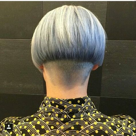 675 best 16801 High Shaved/Close Clippered Napes images on ...