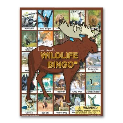 Wildlife Bingo...great game for the entire family!