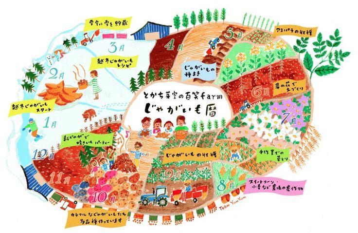 ヤムヤム旅新聞 » 下保農場じゃがいも暦