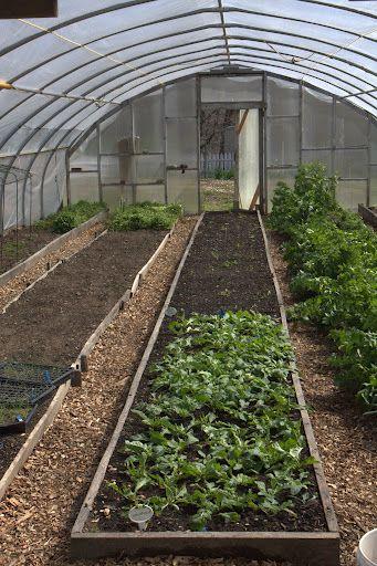 91 best Martha Stewarts garden farm images on Pinterest