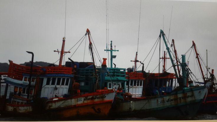 Puket te balıkçı tekneleri. . .