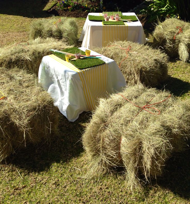 The kiddies tables had Astor grass placemats and hay bales to sit on