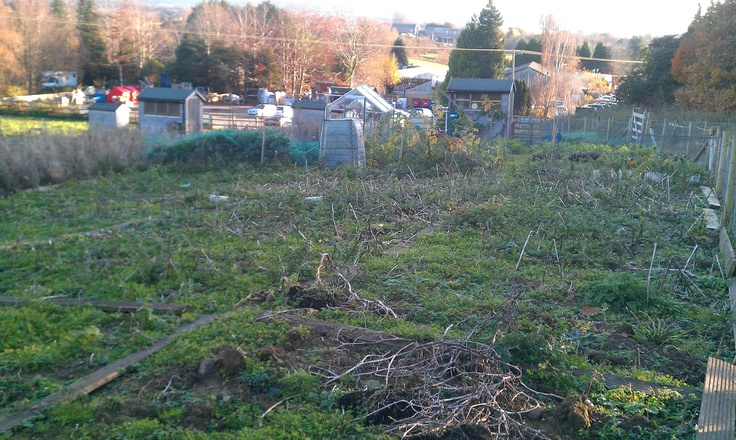 Country Numpty HQ - Day one. The allotment when I first got it - Nov 2012