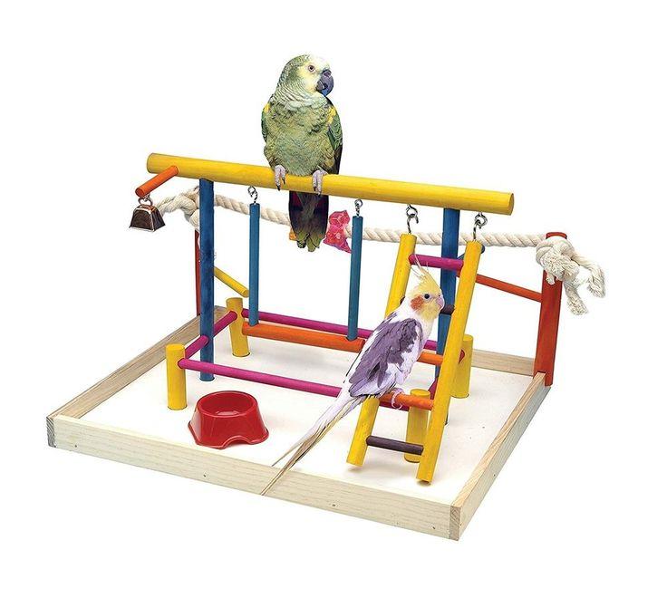 Bird Play Gym Parrot Perch Stand Bird Activity Center Wooden X-Large Playpen Toy #BirdPlayGym