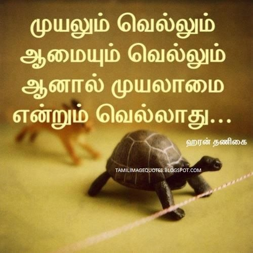 63 Best Images About Tamil On Pinterest