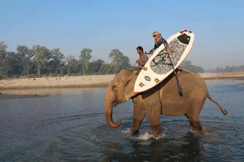 Yep - have SUP. Will travel! Visit http://standuppaddleboardreviewsite.com