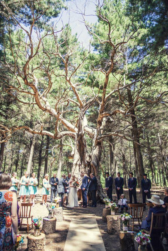 wedding in kuitpo forest // south australia