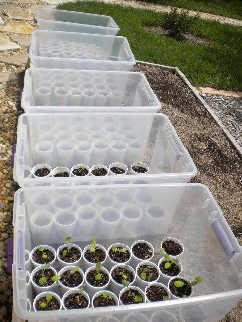Easy greenhouses