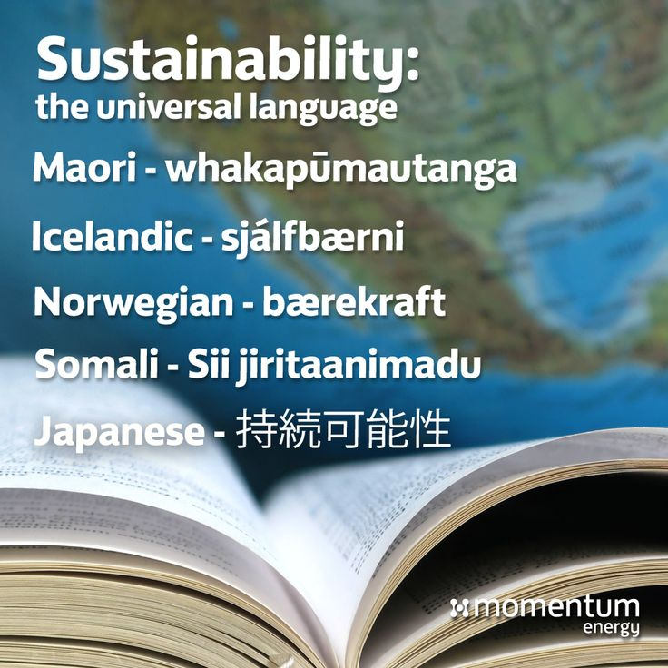 """What does """"sustainability"""" mean to you? Whatever the case, it's beautiful in every language.  #mythbuster #didyouknow #language #words"""