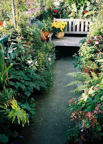 Balcony garden by klaroen, via Flickr