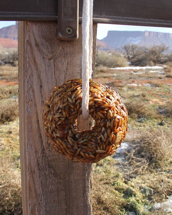Hanging stall treats for horses by BetterHomesteading on Etsy