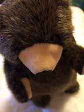 Folktails Folkmanis Bear Puppet With Tag