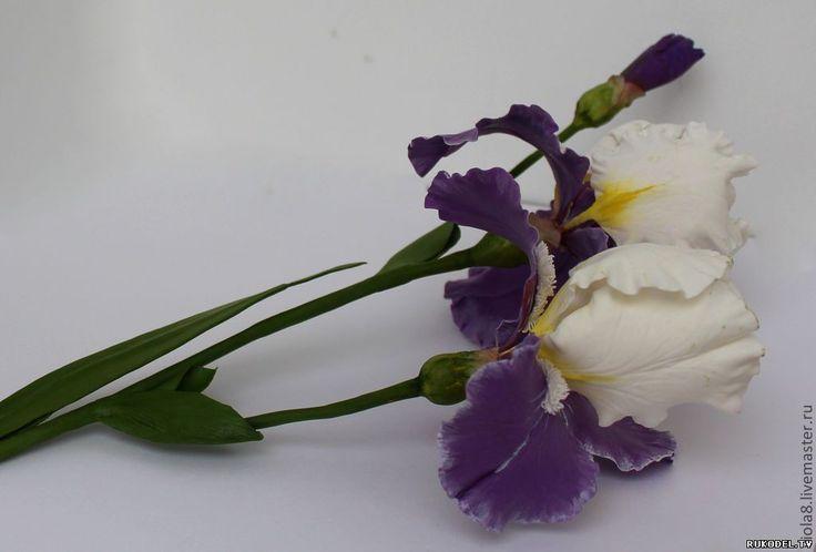 Мастер-класс по керамической флористике цветок Ирис из полимерной глины, часть 1 - Цветы из полимерной глины - Полимерная глина - Каталог статей - Рукодел.TV