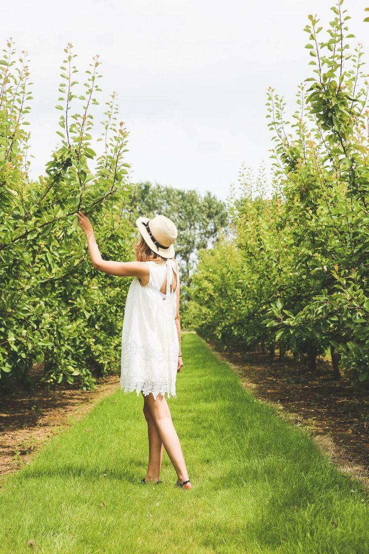 Zoella   Fields of Gold & Strawberries