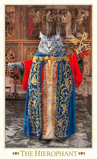 Bohemian Cats Tarot - The Hierophant Find out what the Hierophant means for you: www.tarotbyemail.com