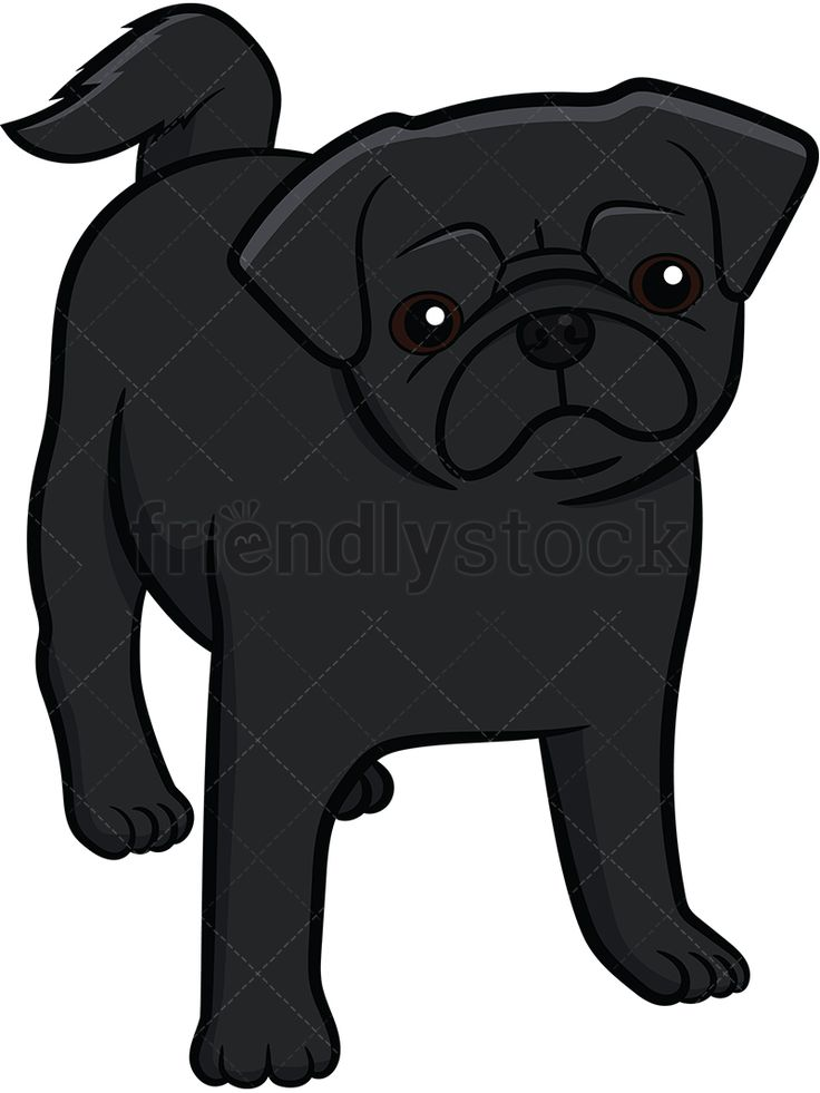 Black Pug Puppy Staring: Royalty-free stock vector illustration of a black pug pup with a curly tail standing on all fours and slightly tilting its head.  #friendlystock #clipart #cartoon #vector #stockimage #art #pug #cute #mastiff #chinese #dutch #puppy #black