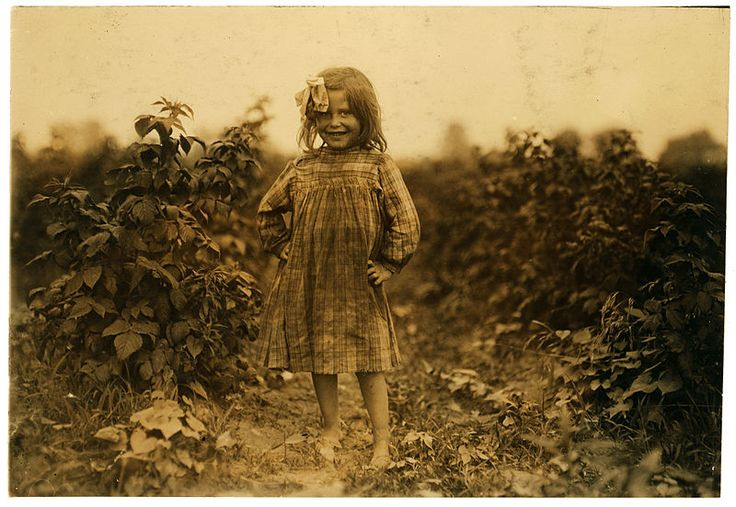 "Laura Petty, a 6 year old berry picker on Jenkins farm, Rock Creek near Baltimore, Md. ""I'm just beginnin'. Picked two boxes yesterday. (2 cents a box). Location: Baltimore, Maryland. Photograph by Lewis Wickes Hine, 8 July 1909."