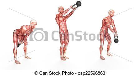 Resultado de imagen para fisiologia del ejercicio dibujo