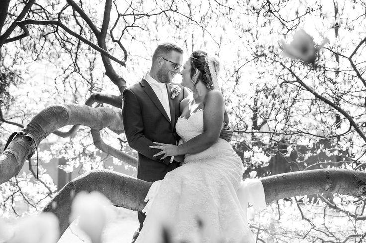 Bedrijfsprofiel van Prinses Bruidsmode « Huwelijk