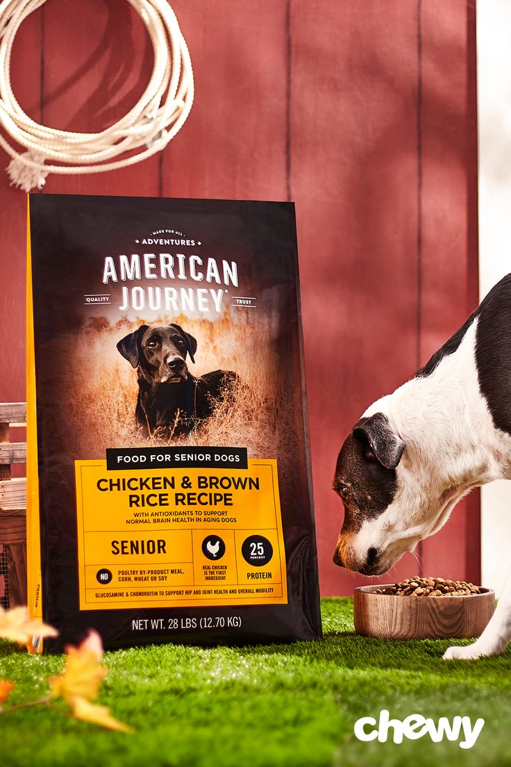 American journey active life formula senior chicken brown