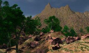 paisaje pinadas 1