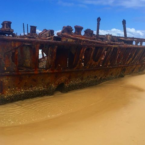 Day 60 - Maheno shipwreck on Fraser Island #mahenoshipwreck #maheno #shipwreck #fraserisland #palaceadventures #backpackers #wreck #beautiful #ww2 #australia #herveybay #qld #camping #adventure #jeepsafari #jeep #outback #bush #queensland #travelling