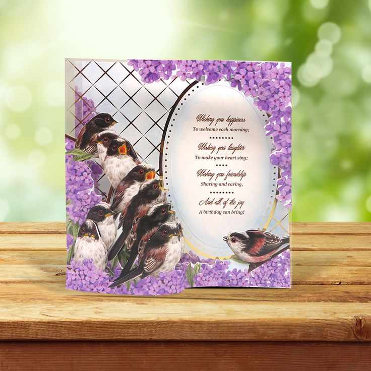 This card was made using the 'Through the Fence Acetate Cards' from the Birds of Britain Collection