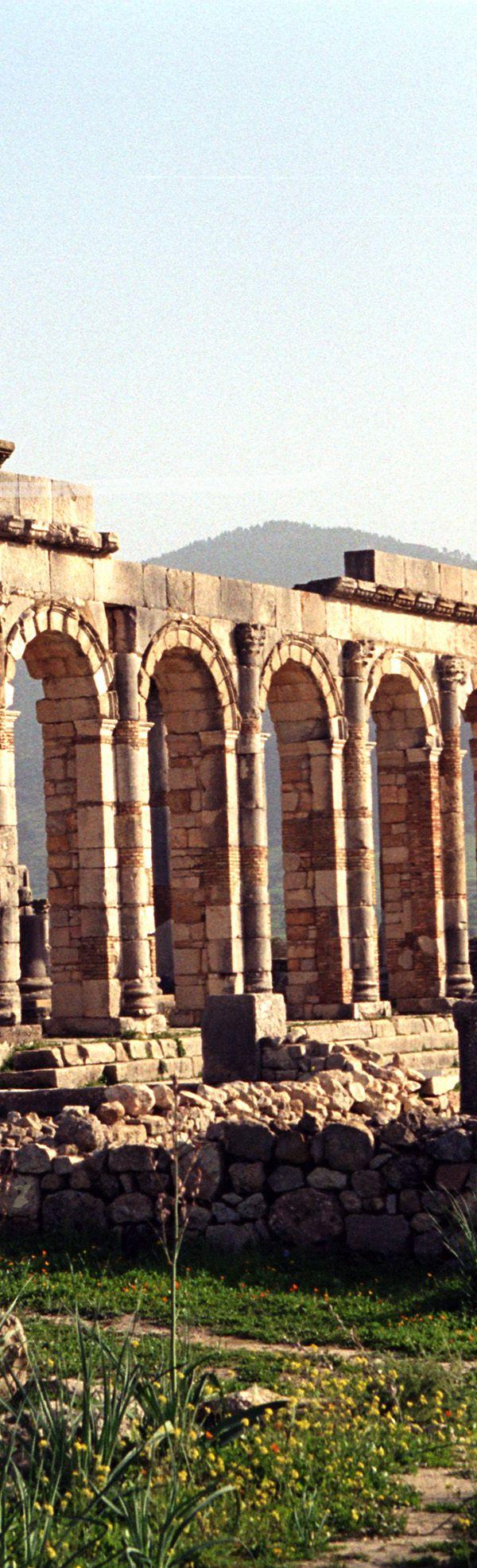 Basilica Ruins at Volubilis - Fez, Morocco | Africa