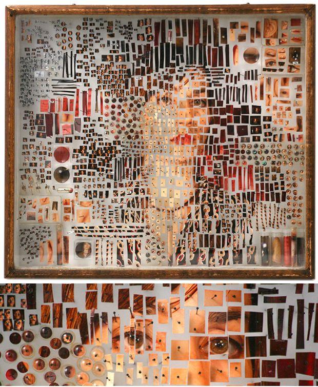 New York artist Michael Mapes' Specimen Boxes