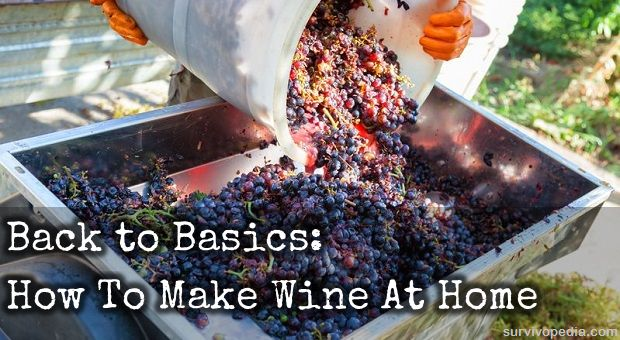 Back to Basics: How To Make Wine At Home