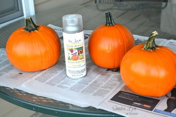 Preserving pumpkins: wash in a solution of warm water, dish liquid and bleach. This will discourage spoilage. After completely dry, spray pumpkin with a sealer (matte or glossy) to discourage the growth of mold.