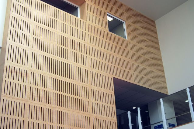 Acoustic Paneling With Birch Plywood Architectural