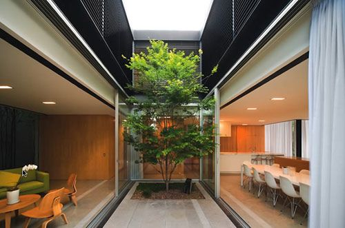 What a courtyard! Szirtes House in Australia by Chenchow Little Architects