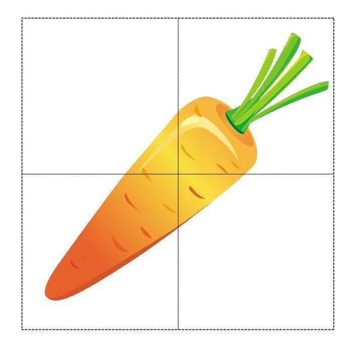 Морковь разрезная картинка