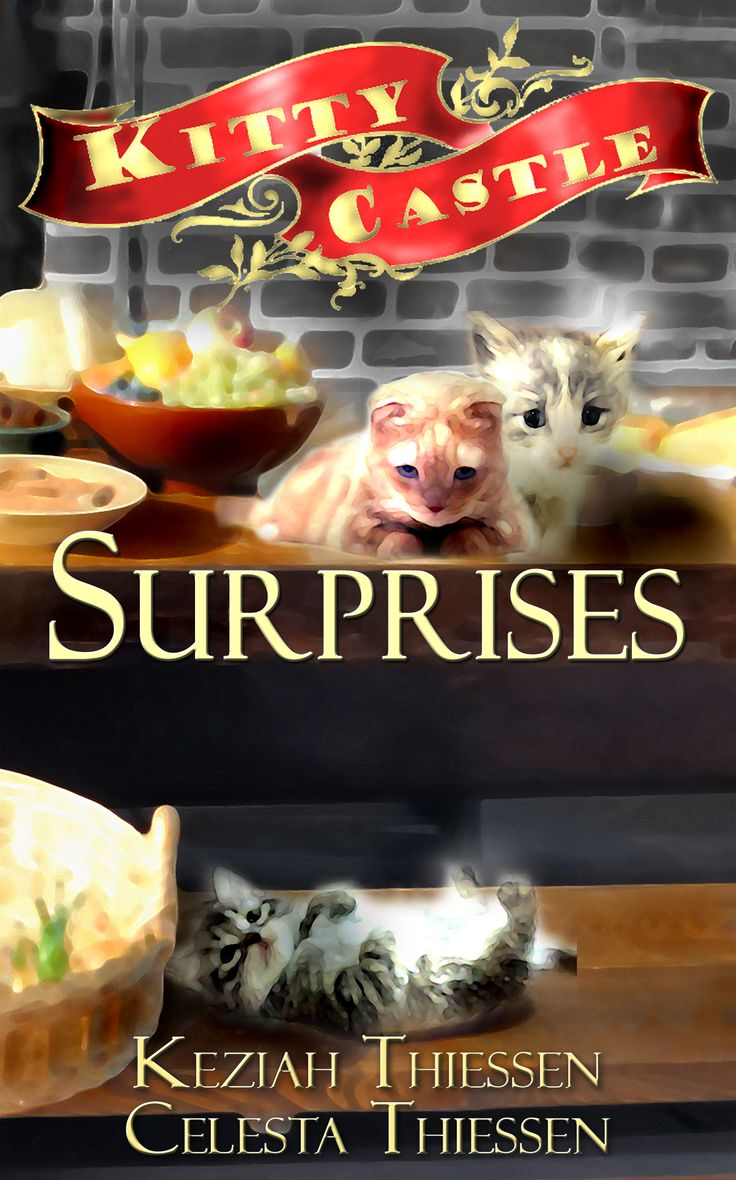 In this second book of the Kitty Castle adventure series, the princesses get magical birthday gifts! They see the effects of magic water, and their tutor gets a surprise of his own. It's a day of surprises and kittens!   The Kitty Castle Series is a set of beginning chapter books written for children in Grades One to Four.  http://amzn.com/B004S3241S