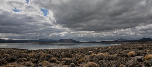 Parque Nacional Laguna Blanca | Zapala - Neuquén