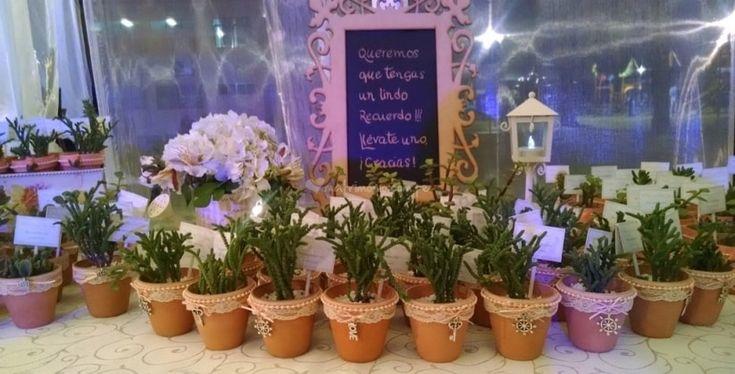 Mesa de recuerdos-suculentas de Concientizarte | Fotos recuerdo, regalo, boda, matrimonio, plantas, ecológico
