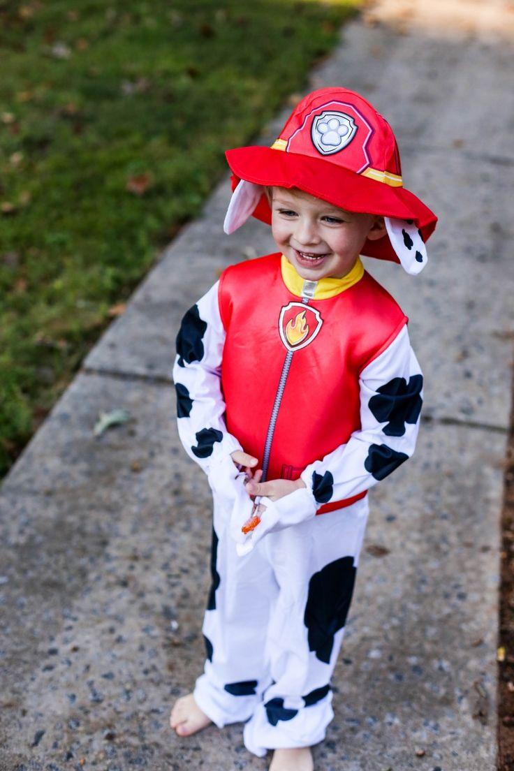 Best 20+ Party city paw patrol ideas on Pinterest | Paw patrol ...