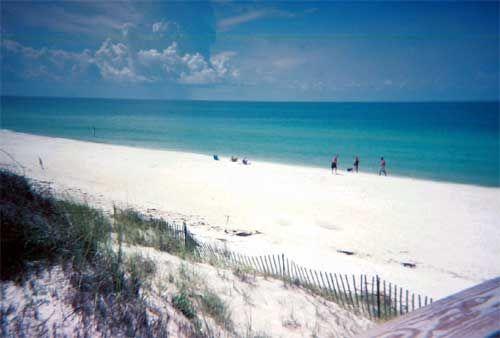 37 Best The Forgotten Coast Cape San Blas Indian Pass Apalachicola Bay St George Island