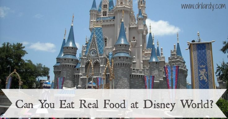 Can You Eat Real Food at Disney World? - www.ohlardy.com