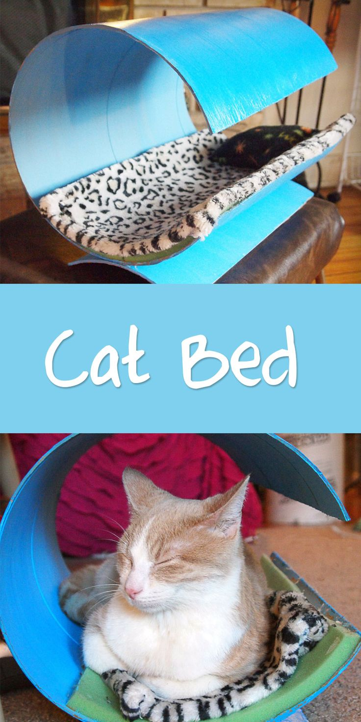 Turn a concrete form tube into a little kitty shelter! Cats like to hide out, and the rounded top gives they an extra feeling of security and privacy.