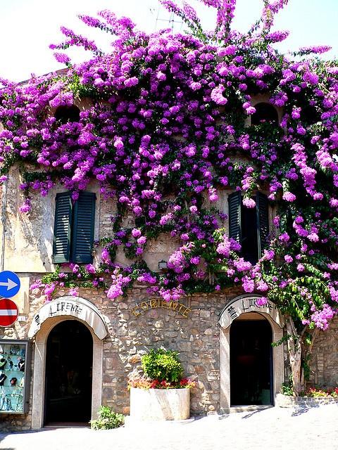 L'oriente a Sirmione in Summer Italy via flickr
