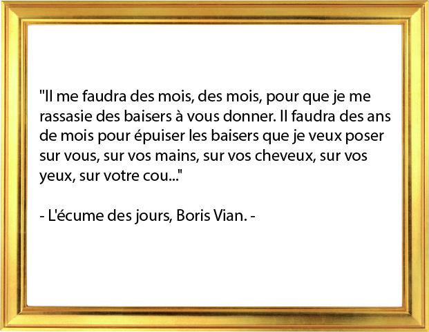 Citation L Ecume Des Jours