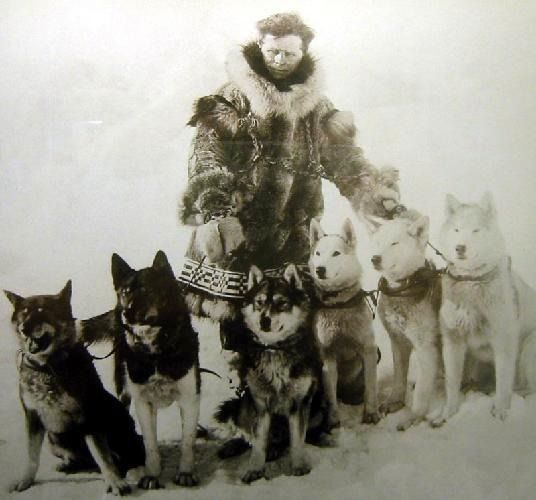 2423474-A History of the Iditarod Sledrace Nome  http://www.pinterest.com/pin/54184001738946593/